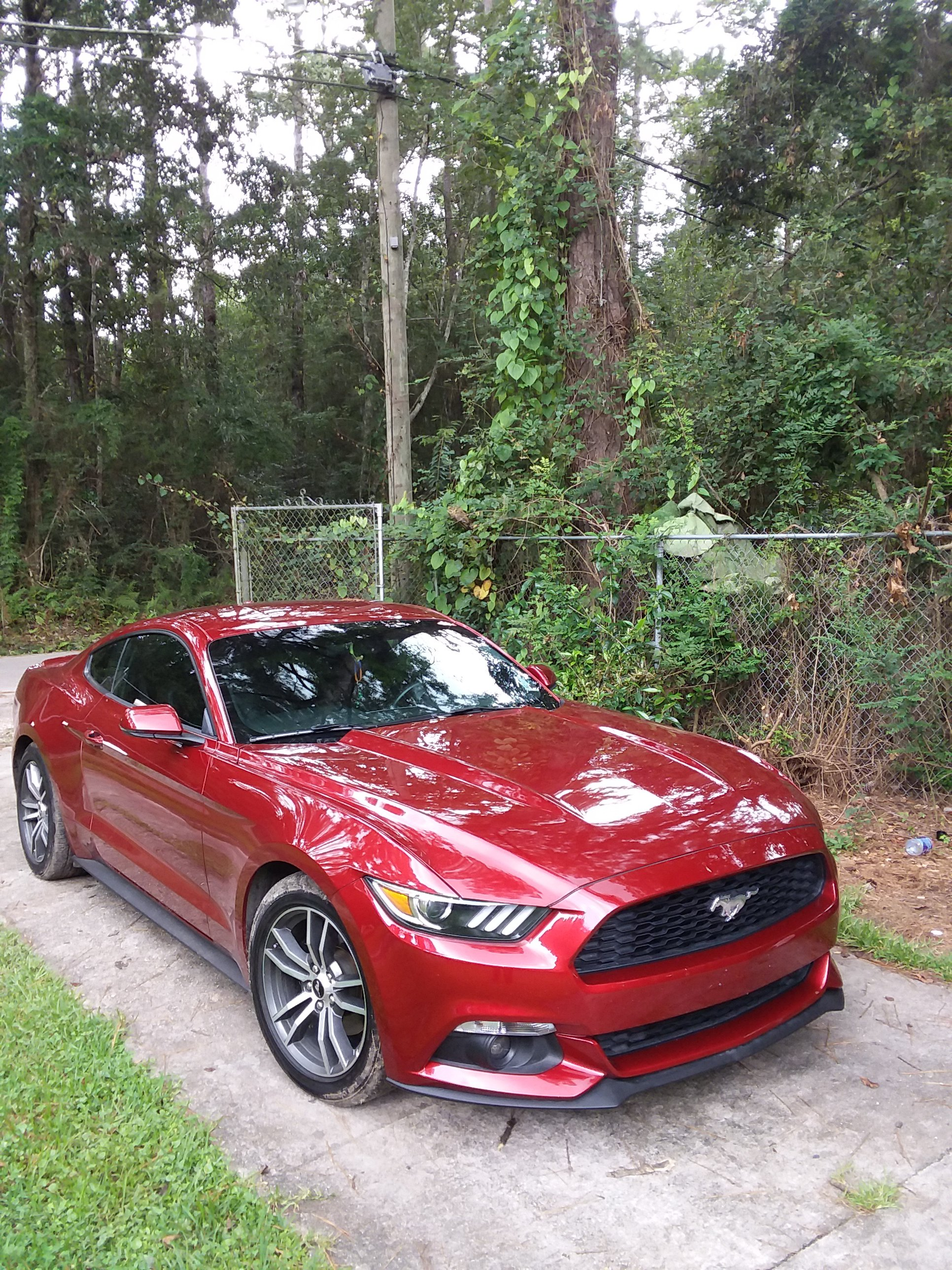 The Ruby Red Mustang Ecoboost Thread Page 3