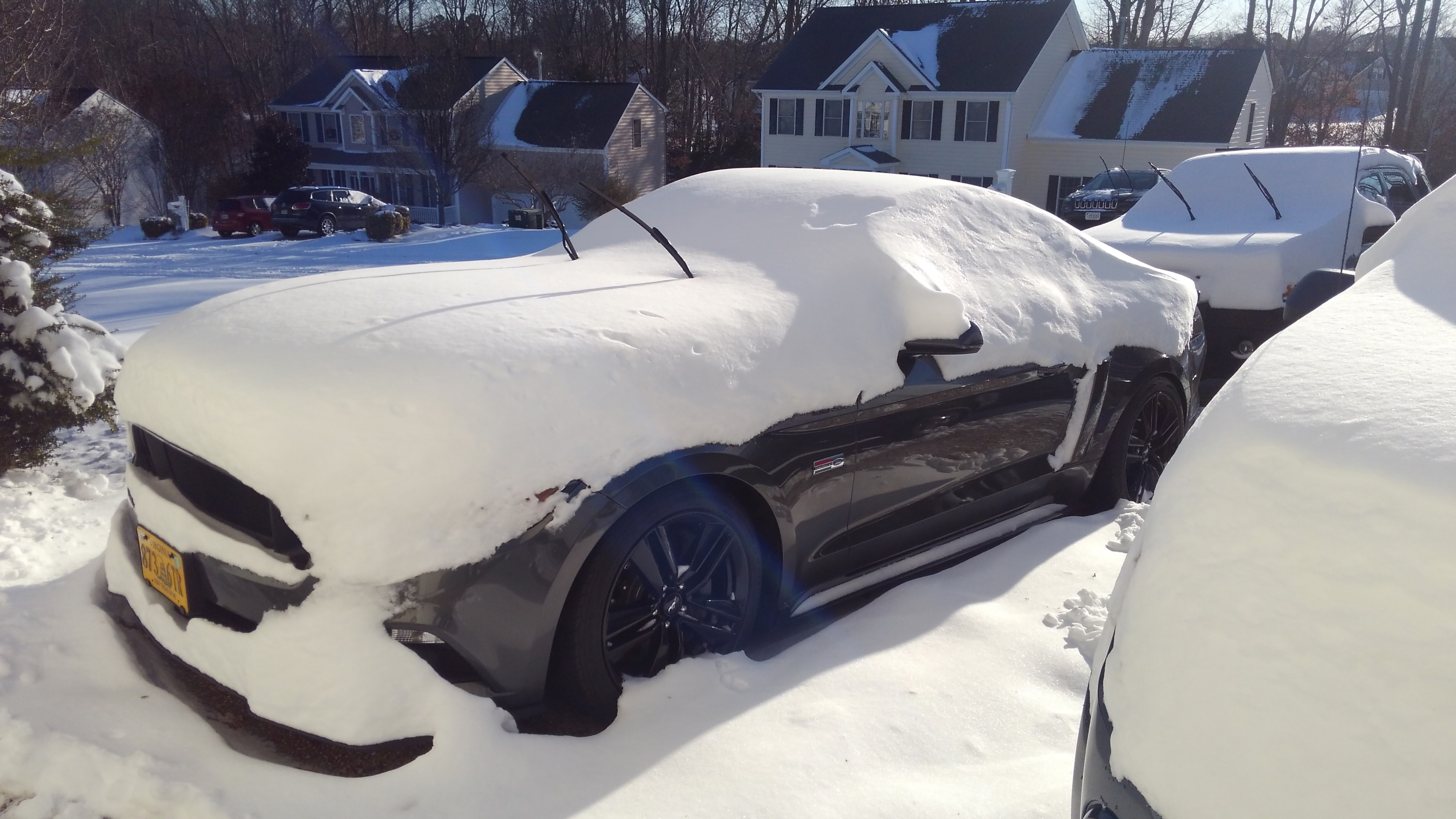 Snow stangs